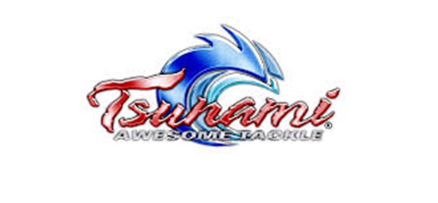 tsunami-4c